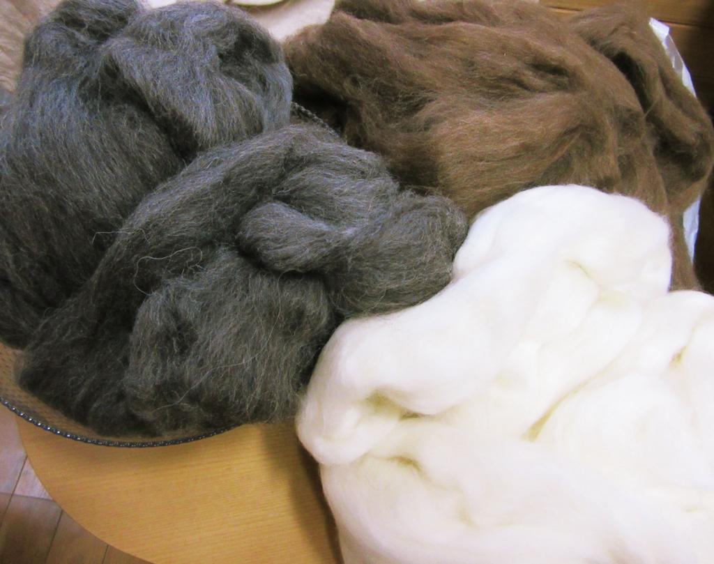グレーと茶色の毛がシェットランドウール。白い毛はポロワスウール。