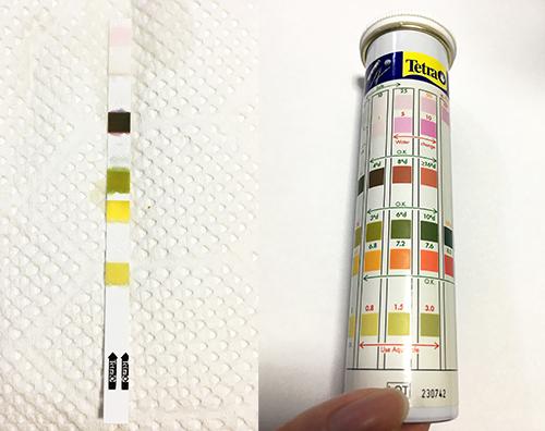 テトラ(Tetra)テスト6in1 試験紙比色表の画像