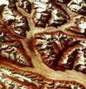 f:id:globalhead:20051216005910j:image
