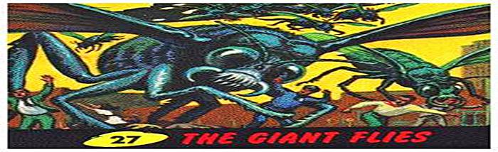 f:id:globalhead:20080525203900j:image