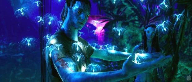 f:id:globalhead:20100102092533j:image