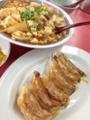 餃子、麻婆豆腐@東山三条 マルシン飯店