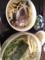 ちらし寿司と 蕎麦@そばきり てらうち@長堀橋