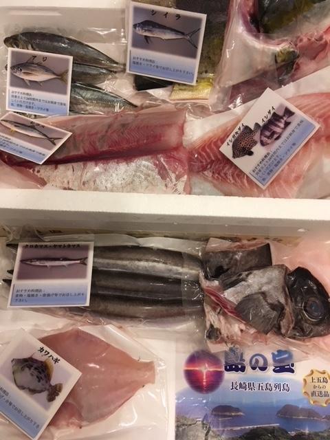 五島列島の鮮魚