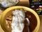 ジャークチキンカレー、鶏とごぼうの白ごまカレー