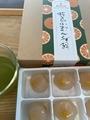 桜島小みかんくず餅 ×