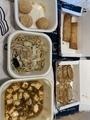 野菜炒め、餃子、春巻き、麻婆豆腐@王将