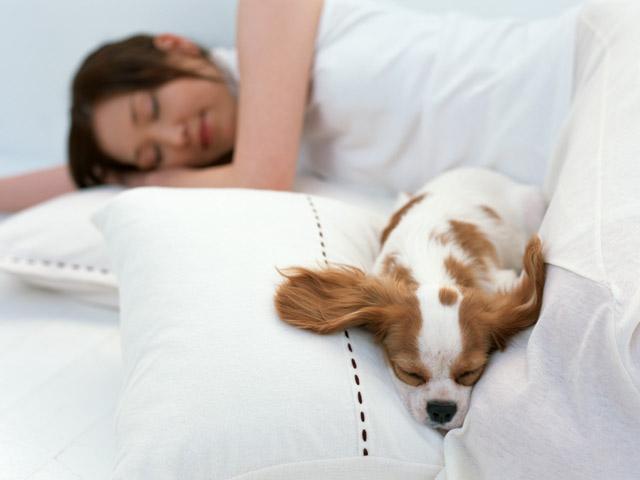 筋トレ後には休養と睡眠も大事です。