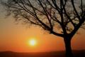 若草山の夕日