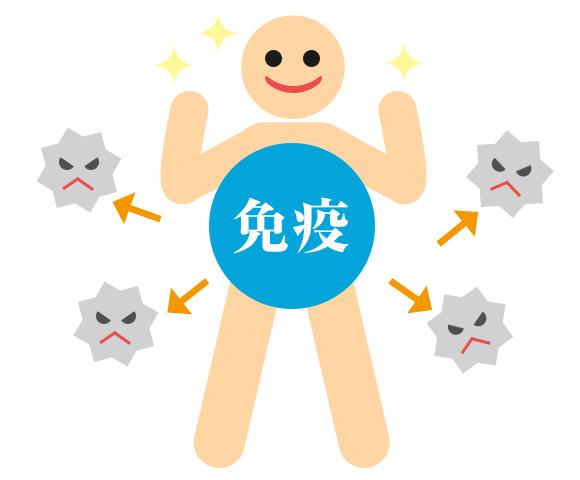 f:id:go-tokita:20160413211939j:plain