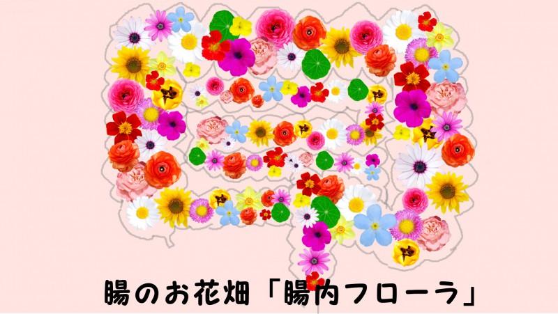 f:id:go-tokita:20160519220038j:plain