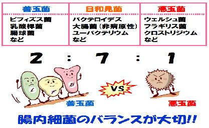 f:id:go-tokita:20160616142159j:plain