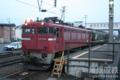 2010.05.04 五稜郭