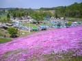 2010.06.06 芝桜まつり