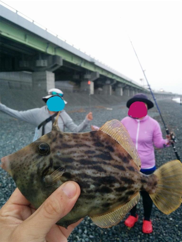 f:id:go_fishing2017:20170613230223j:image