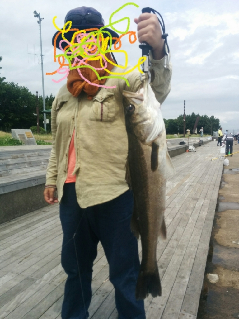 f:id:go_fishing2017:20170911205850j:plain