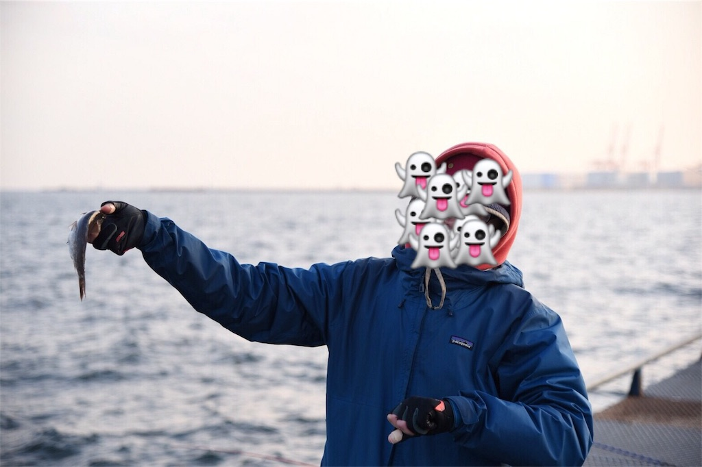 f:id:go_fishing2017:20180121213150j:image