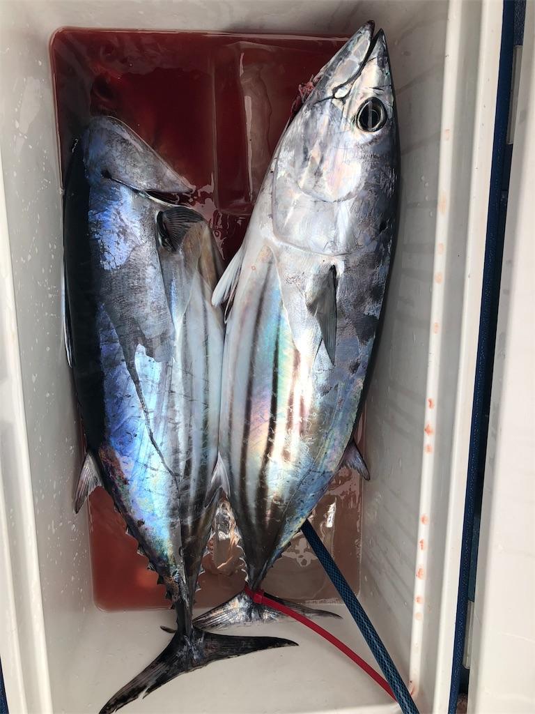 f:id:go_fishing2017:20180919232710j:plain