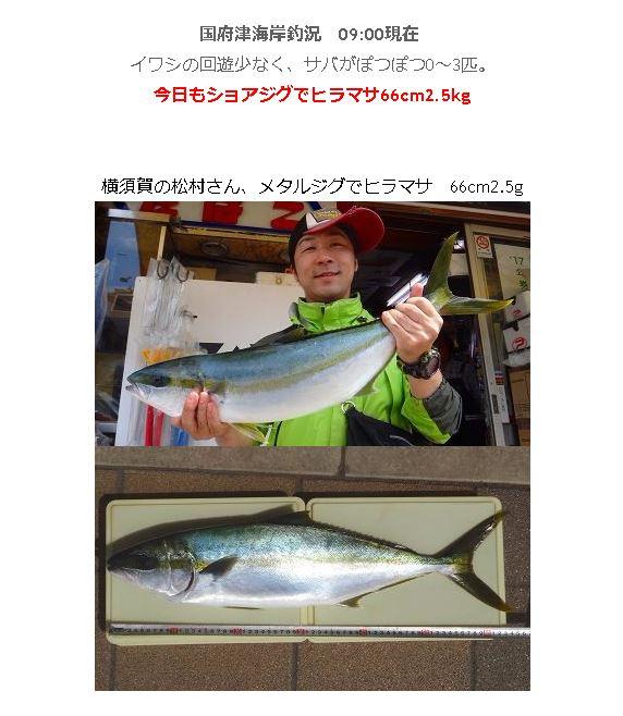 f:id:go_fishing2017:20181031215910j:plain