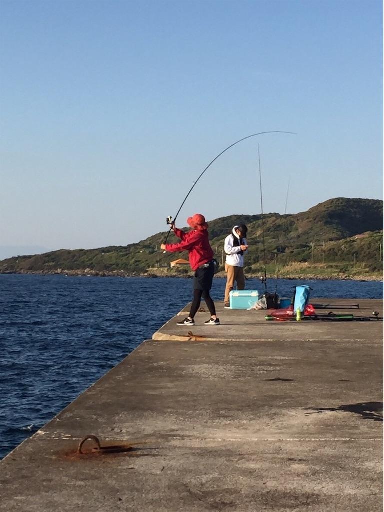 f:id:go_fishing2017:20181125141701j:image