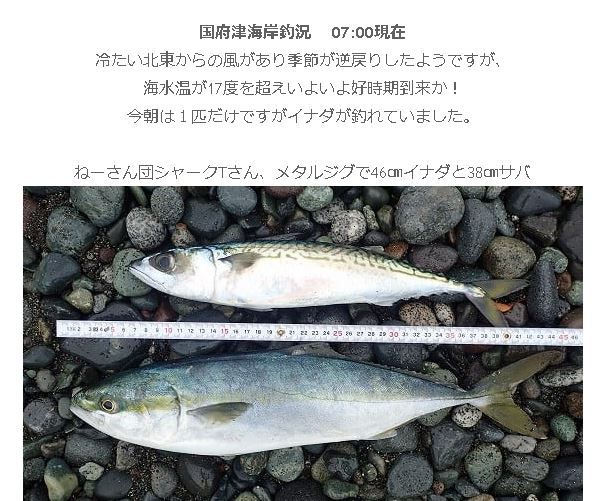 f:id:go_fishing2017:20190428170428j:plain