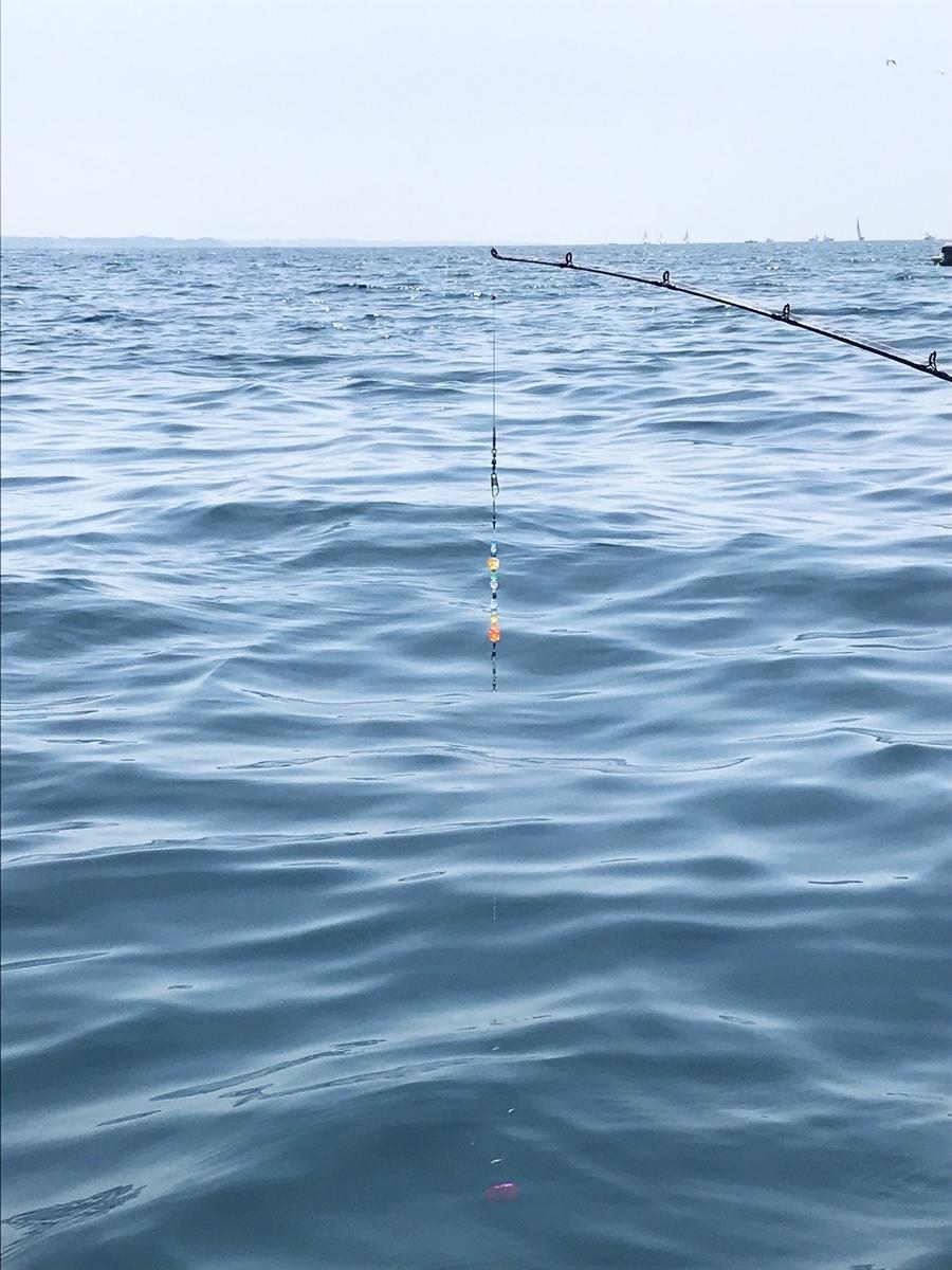 f:id:go_fishing2017:20190430111549j:plain