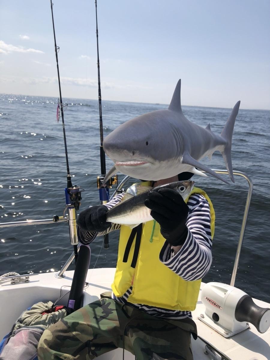 f:id:go_fishing2017:20201005213739j:plain