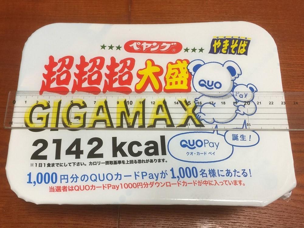 f:id:go_kuma:20190805222244j:plain