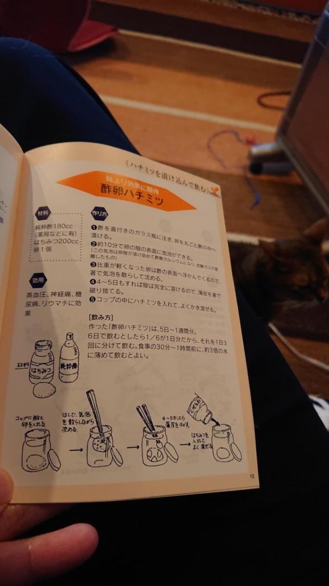 f:id:gobuichikun:20210430030414j:plain