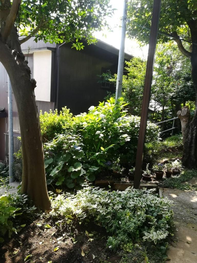 f:id:gochamazekikuna:20180612163900j:plain