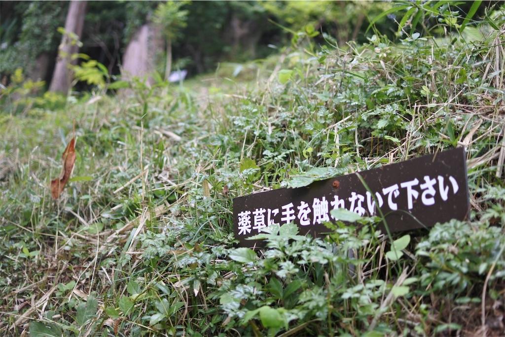 f:id:gochisou_oyado:20200402094050j:plain