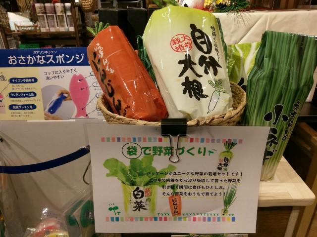 f:id:godai_inc:20171116140611j:image