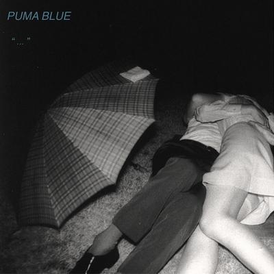 Puma Blue: Swum Baby EP (2017) - Bandcamp