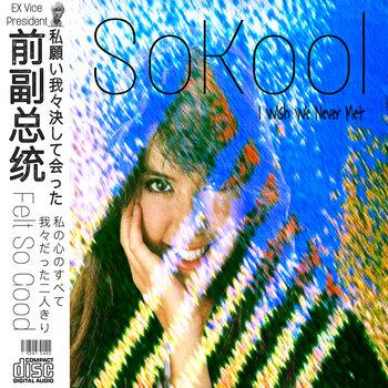 前副总统 SoKool: I Wish We Never Met (2020) - Bandcamp