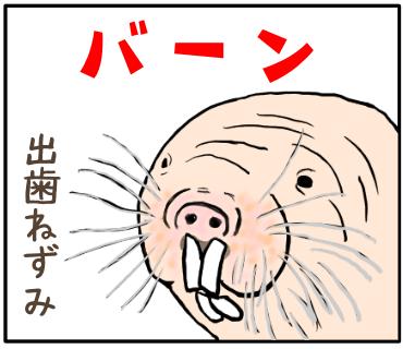 f:id:goensou:20190825002548p:plain