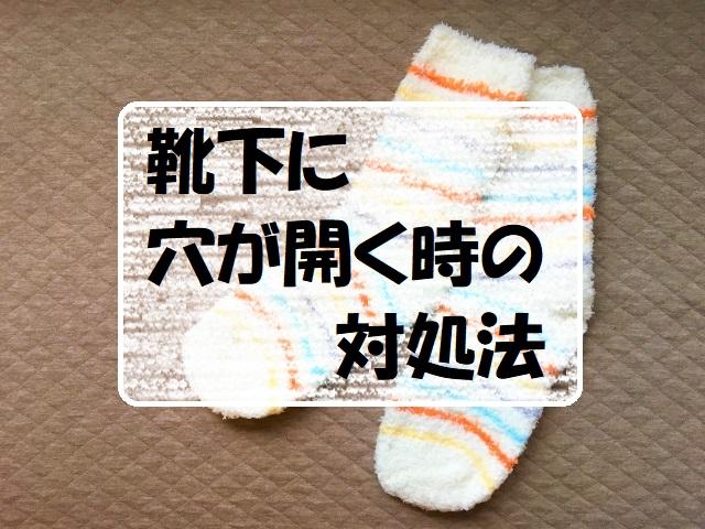 f:id:gogaku-no-tabibito:20210620101155j:plain