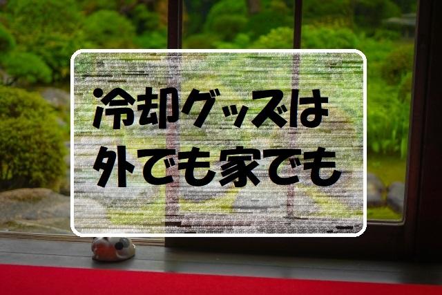 f:id:gogaku-no-tabibito:20210623191656j:plain