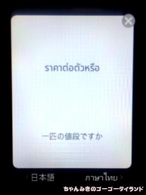 f:id:gogo-thailand:20190228214342j:plain
