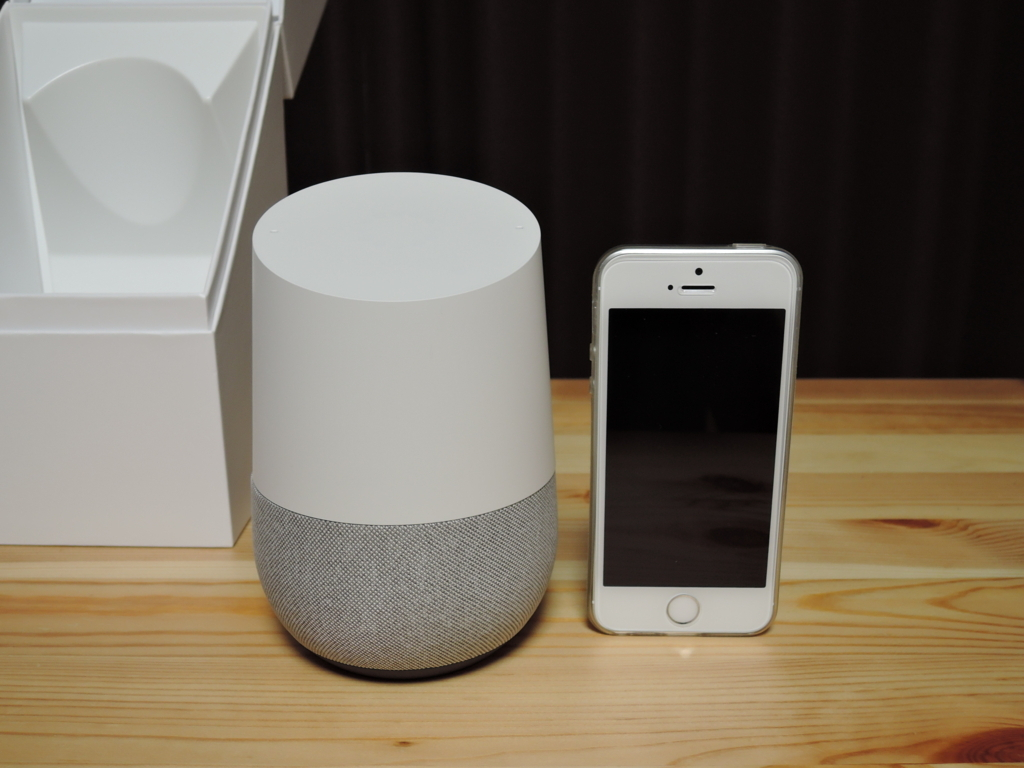 google home body
