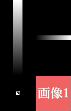 f:id:gogowaten:20210402162403p:plain