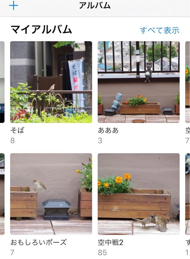 f:id:gohatori:20200725072213j:image