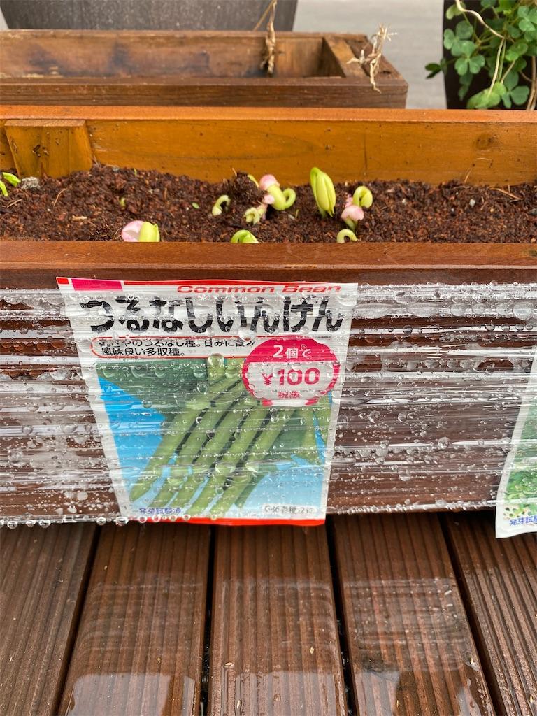 f:id:gohatori:20200920080027j:image