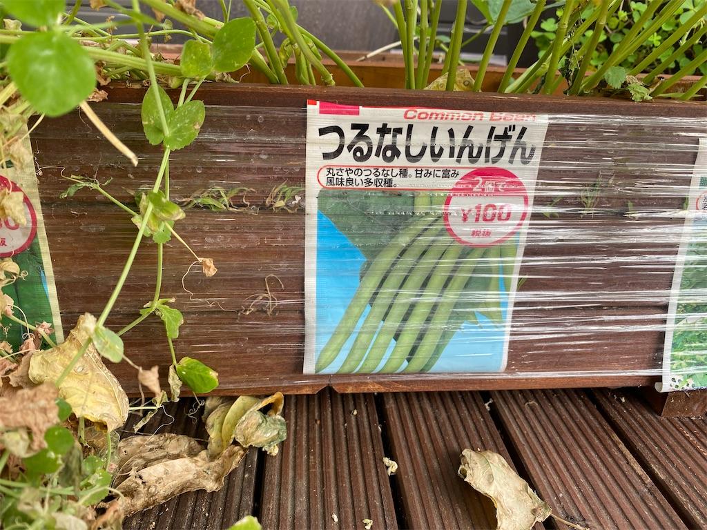 f:id:gohatori:20201106075739j:image