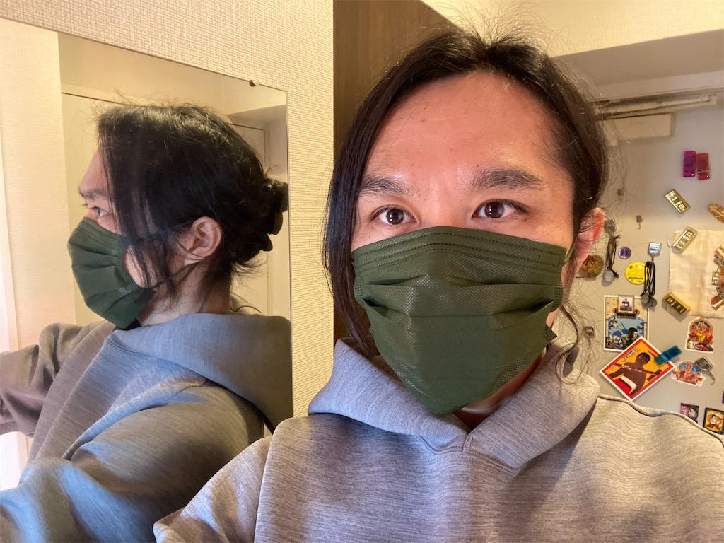f:id:gohatori:20210220093831j:image