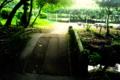 [木][公園][橋][池]