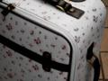[鞄][スーツケース]