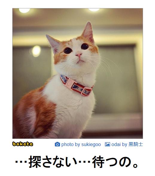 f:id:gokanno:20190401154336p:plain