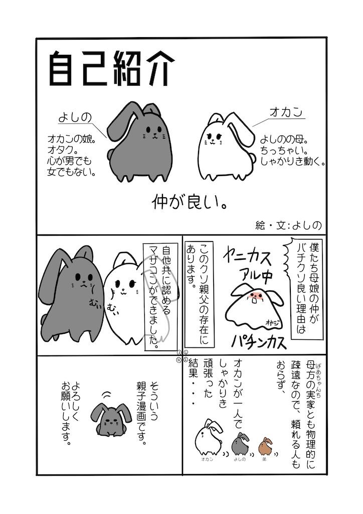f:id:gokei-ryuya:20200131213728j:image