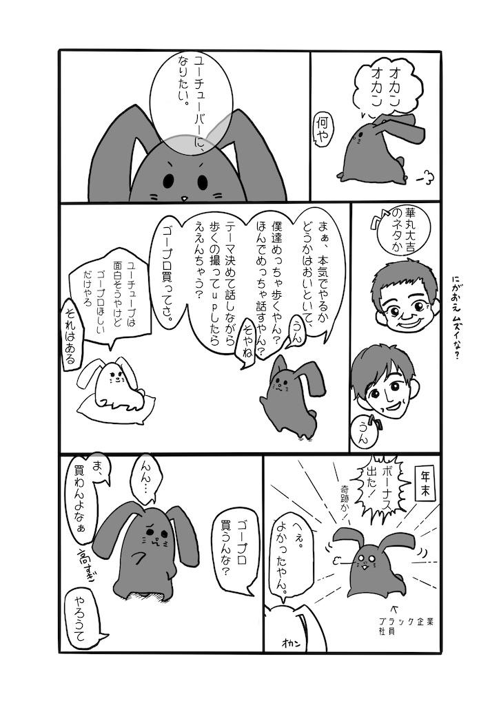 f:id:gokei-ryuya:20200208203427j:image