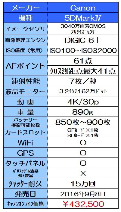 f:id:gokidon2015:20160825195006j:plain